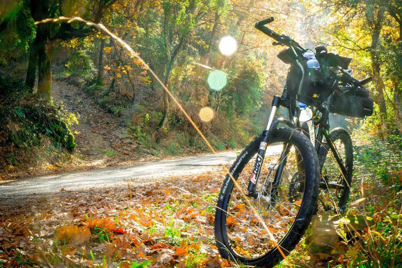 de koog fiets huren