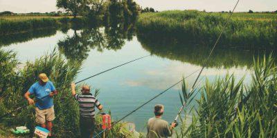 vissen vrije tijd